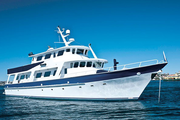 cruise boat hull survey and propulsion system maintenance and repair by Halliday Engineering